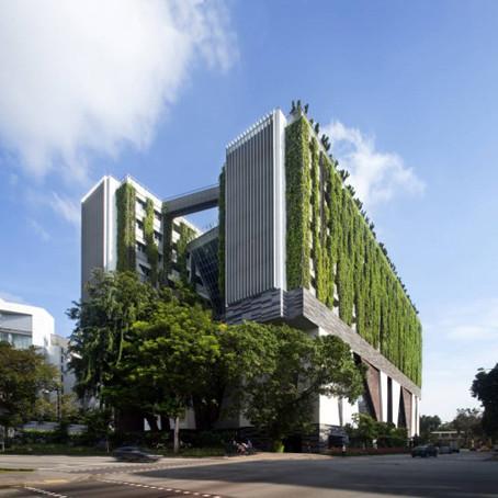 projeto-de-arquitetura-usa-jardim-vertical-em-esco