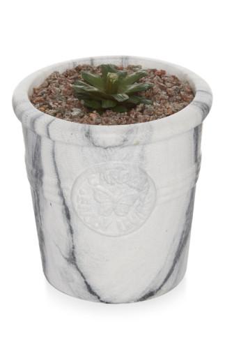 Kimball-7199901-small plant marble pot, grade miss