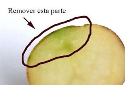 verde 2.jpg