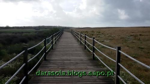 Praia_grande_08.jpg