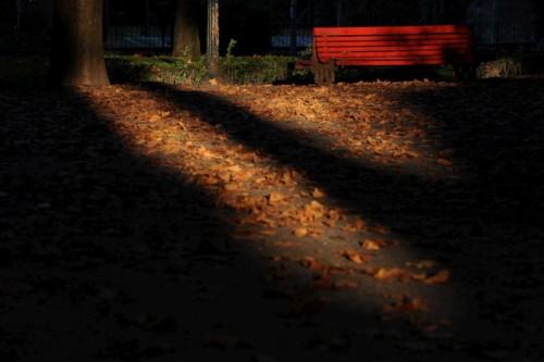 Noites de Outono.jpg