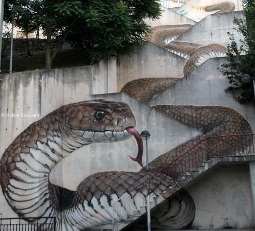 Cobra  HS.jpg