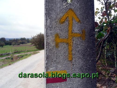 Rota_miscaro_Satao_30.JPG