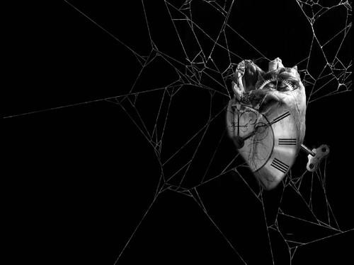 coracao-relogio-preso-na-teia-de-aranha-wallpaper-