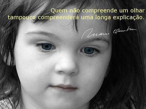 Quem não compreeende um olhar, tampouco compreenderá uma longa explicação!