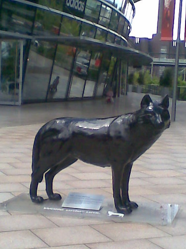lobo bronze