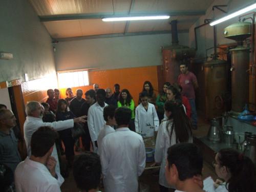 Valongo Aula no Alambique (9).jpg