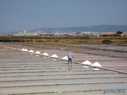 Salinas da Figueira da Foz (15) Campos de sal com vista para a serra [en] Salt fields of Figueira da Foz in Portugal