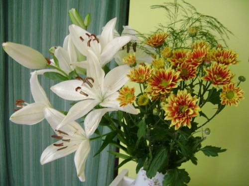 As flores são magia