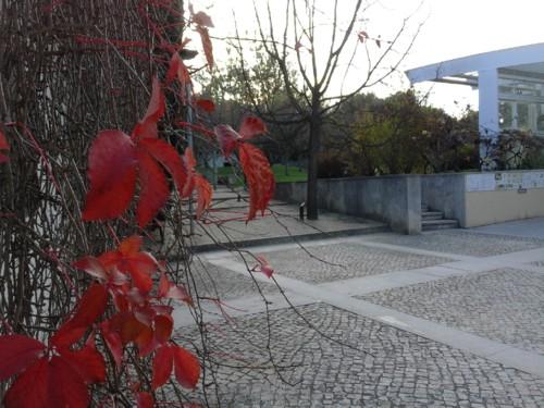 Entrada Jardim pintores. Original DAPL. 2017.jpg