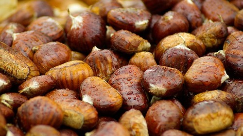 Chestnuts-Fall-Brown-Raindrops-994138.jpg