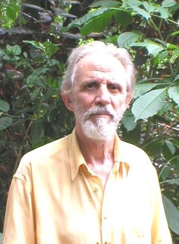 Francisco Gomes de Amorim
