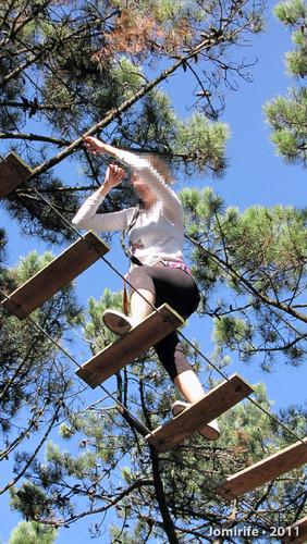 Parque Aventura: Pelas tábuas lá em cima
