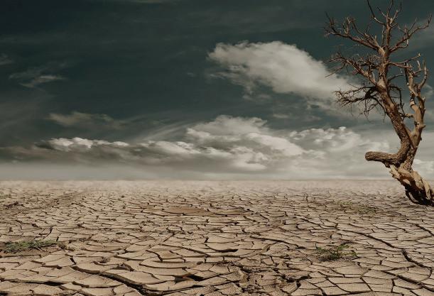 desert-279862_1920.jpg