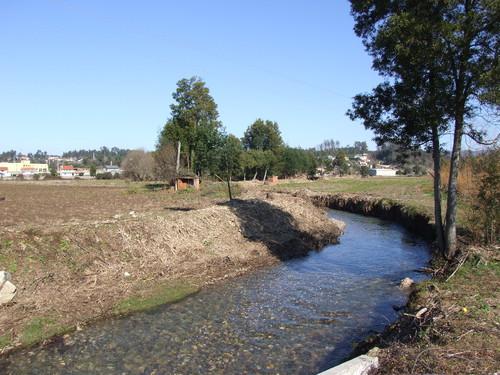 Valongo do Vouga limpeza rio.JPG