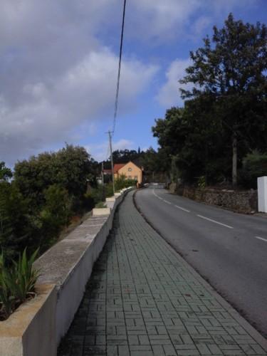 Estrada Serra. Original DAPL.2017.jpg