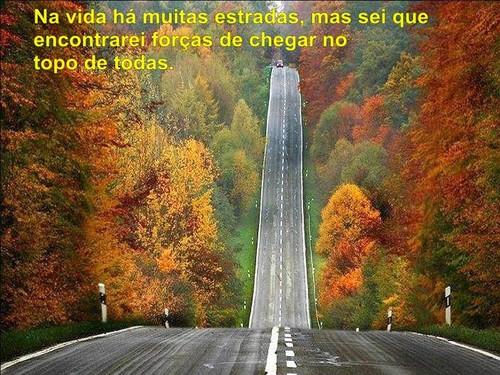 estradas.jpg
