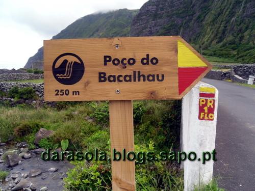 Azores_Flores_PocoBacalhau_08.JPG