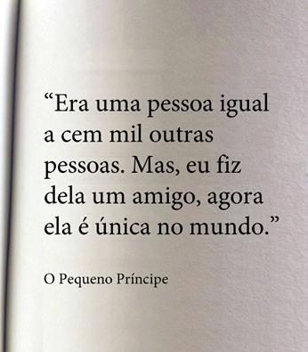 amigo4.png