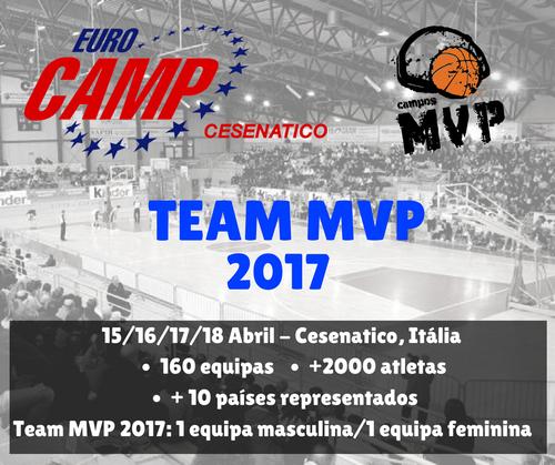 MVP 2017.png