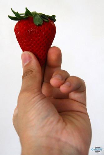 Morango (10) Na mão