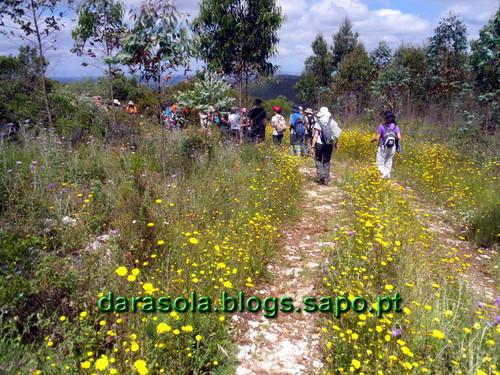 Buracas_Casmilo_19.JPG