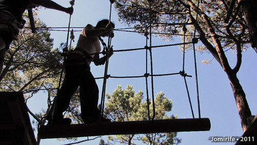Parque Aventura: Pelo tronco