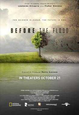 Before_the_Flood_(2016_documentary_film)_poster.jp