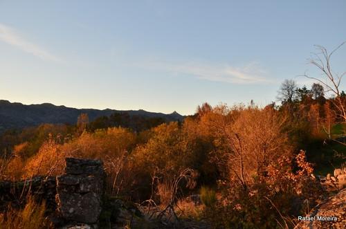 Cores de Outono