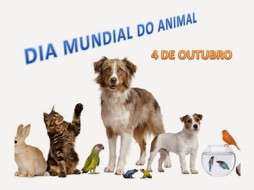 Dia do animal.jpg