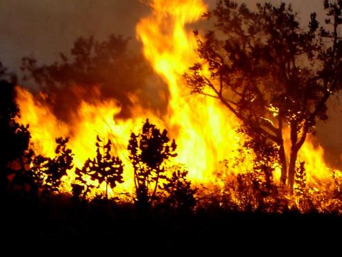 incendio2010[1].jpg