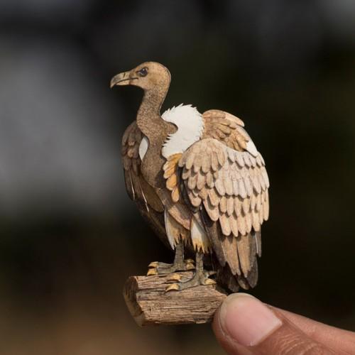 paper-cut-art-miniature-birds-nayan-shrimali-vaish