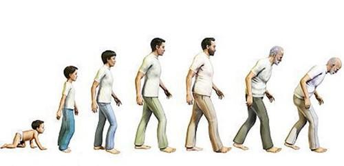 IdadeEvolucao.jpg