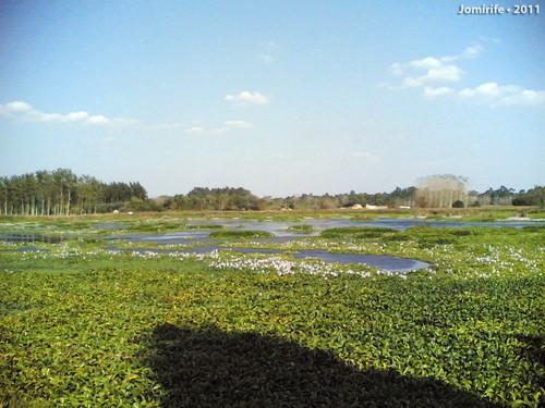 Lagoa da Salgueira (Willow Pond) - Bom Sucesso, Ca