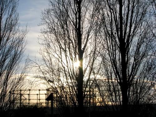 o inverno da luz