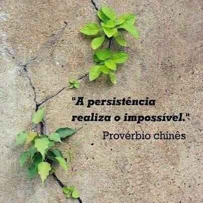 persistência2.jpg