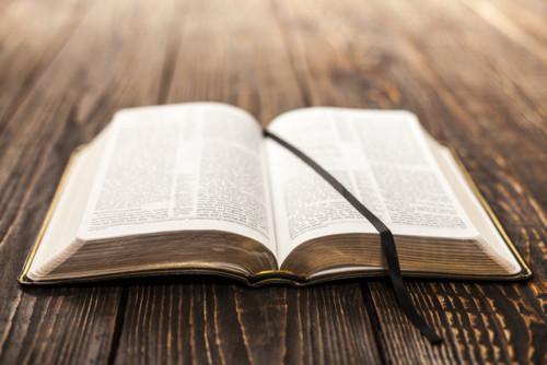 biblia-sagrada-l.jpg