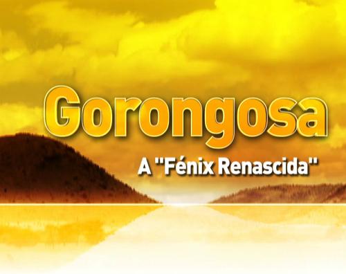 RTP_A Fenix Renascida.png