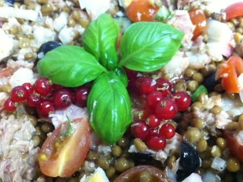 Salada de lentilhas