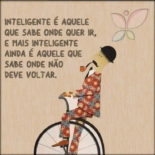 inteligente2.jpg