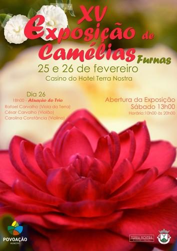 FURNAS - Açores - camelias 2017 - 800x.jpg