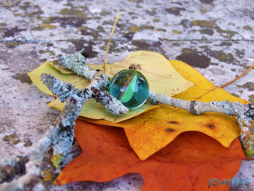 O berlinde - Elementos do Outono [EN] The marble - Elements of Autumn