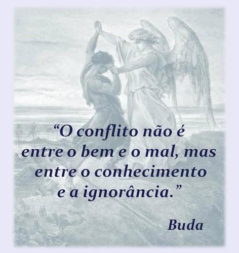 BUDA - 179163_10151371226441537_1820053765_n.jpg