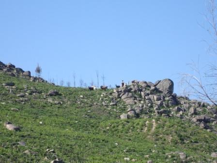 Paisagem sobre a Serra do Esporão