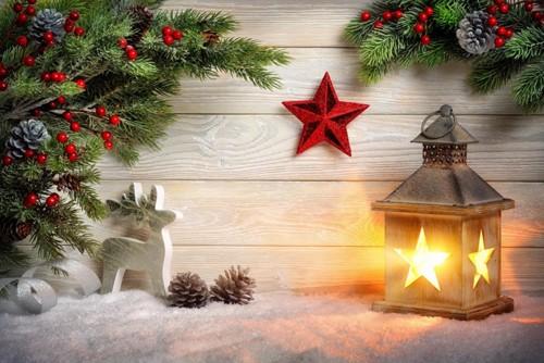 Christmas_Holidays_Deer_507694.jpg