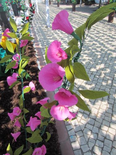 imagens jardim florido:JARDIM FLORIDO EM CAMPO MAIOR 2013 – ROSADEMESINHA