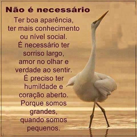 FB_IMG_1490470402059.jpg