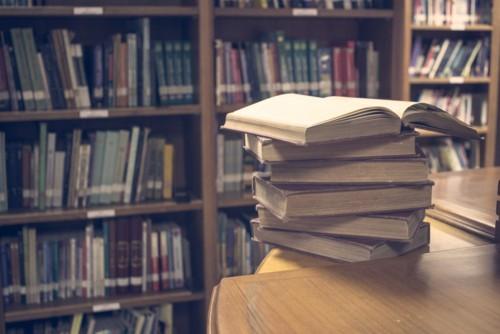 No-hay-biblioteca-pequeña-siempre-y-cuando-sea-de