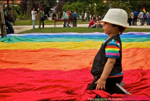 Co-adopção e adopção por casais do mesmo sexo