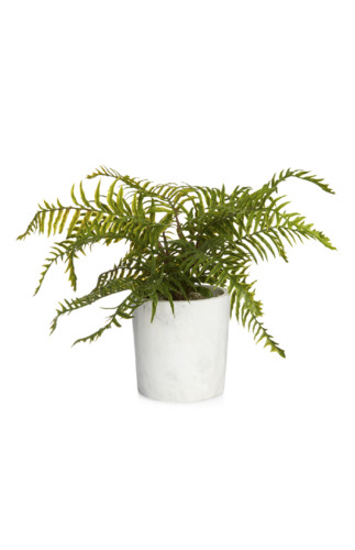 Kimball-missing-larger faux plant marble pot, grad